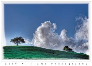 Photograph of oak trees and clouds in San Benito County, California