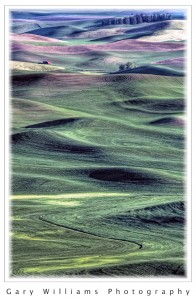 Photographs of fields in the Palouse region of Washington State