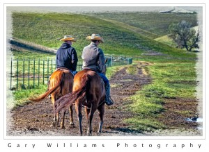 Photograph of 2 horses and riders in southeastern Washington