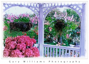 Photograph of flowers framed by arches in Half Moon Bay, California