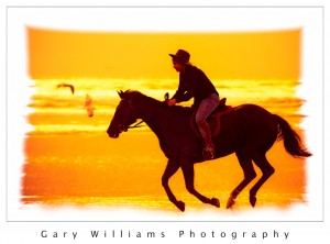 Photograph of horse and rider on a beach at Morro Bay, California