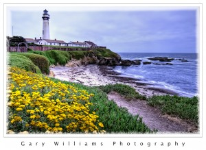 Photograph of Pigeon Point Lighthouse, north of Santa Cruz, California
