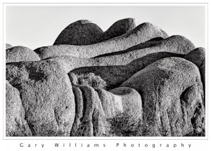Photograph of boulders in the Joshua Tree National Park