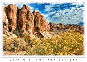 Photograph of boulders and flowers in the Alabama Hills, near Lone Pine,  California