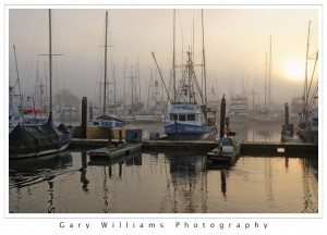 Photograph of boats in the fog at Moss Landing Harbor