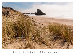 Photograph of coastal grasses, waves, beach, and sea stacks at Pistol River Beach in Oregon