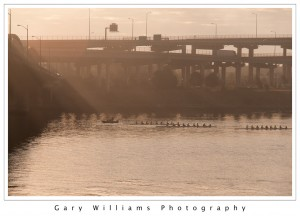 Photograph of rowers rowing under a bridge on the Willamette River in Portland, Oregon