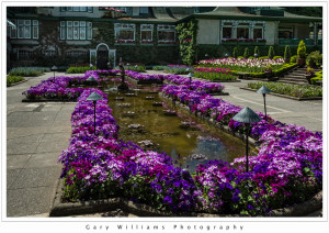Photograph of the Italian Garden at the Butchart Gardens, British Columbia, Canada