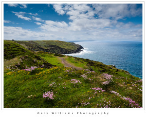 Photograph of flowers and a coastal path at Botallack Mine, Cornwall, England