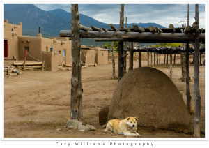 Photograph of a sleeping dog and adobe buildings in the Taos Indian Pueblo, Taos, New Mexico