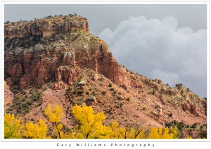 Photograph of a Mesa, cottonwood trees and redrock cliffs at Ghost Ranch near Albiquí, New Mexico
