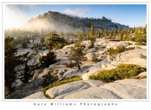 Photograph of trees, clouds and boulders Tuolumne Meadows, Yosemite