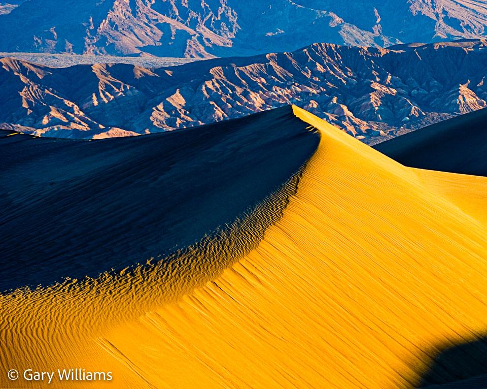 Dune-Study-3.jpg