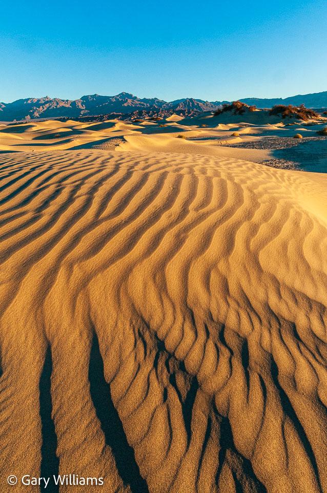 Dunes_01162009_1905.jpg