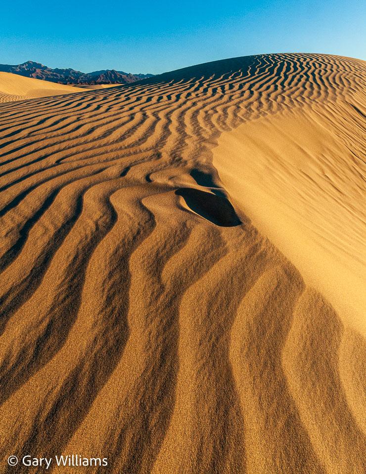 Dunes_01162009_1930.jpg