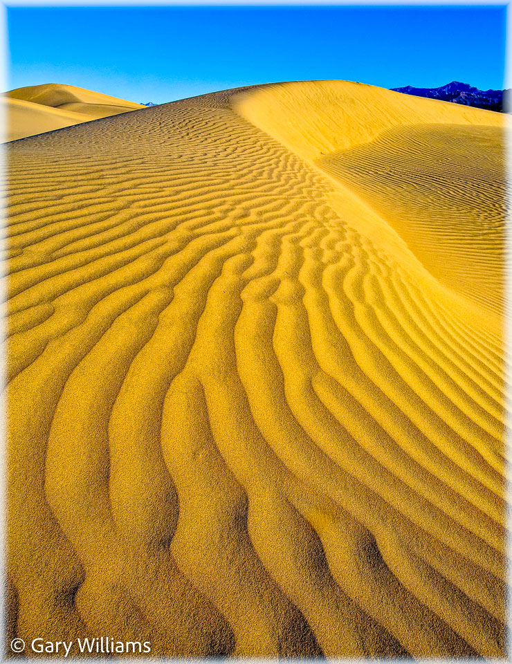Dunes_01162009_1933-Edit.jpg