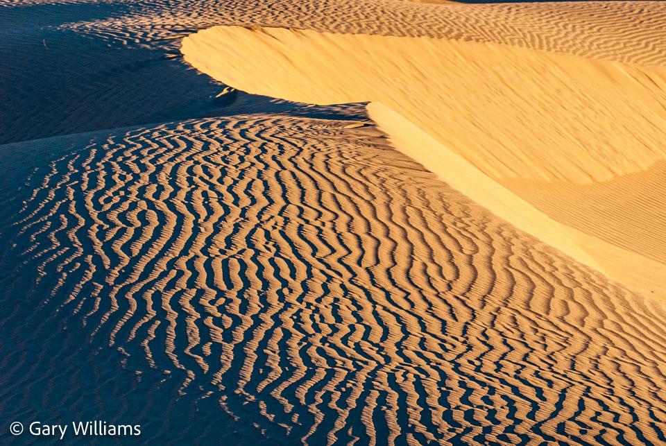 Dunes_01162009_1941.jpg
