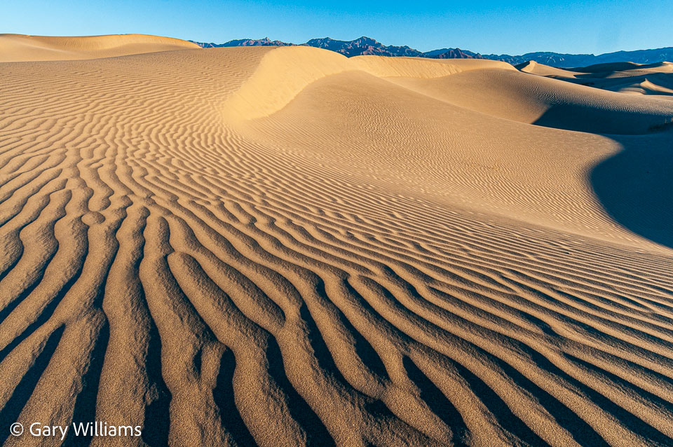 Dunes_01162009_1945.jpg