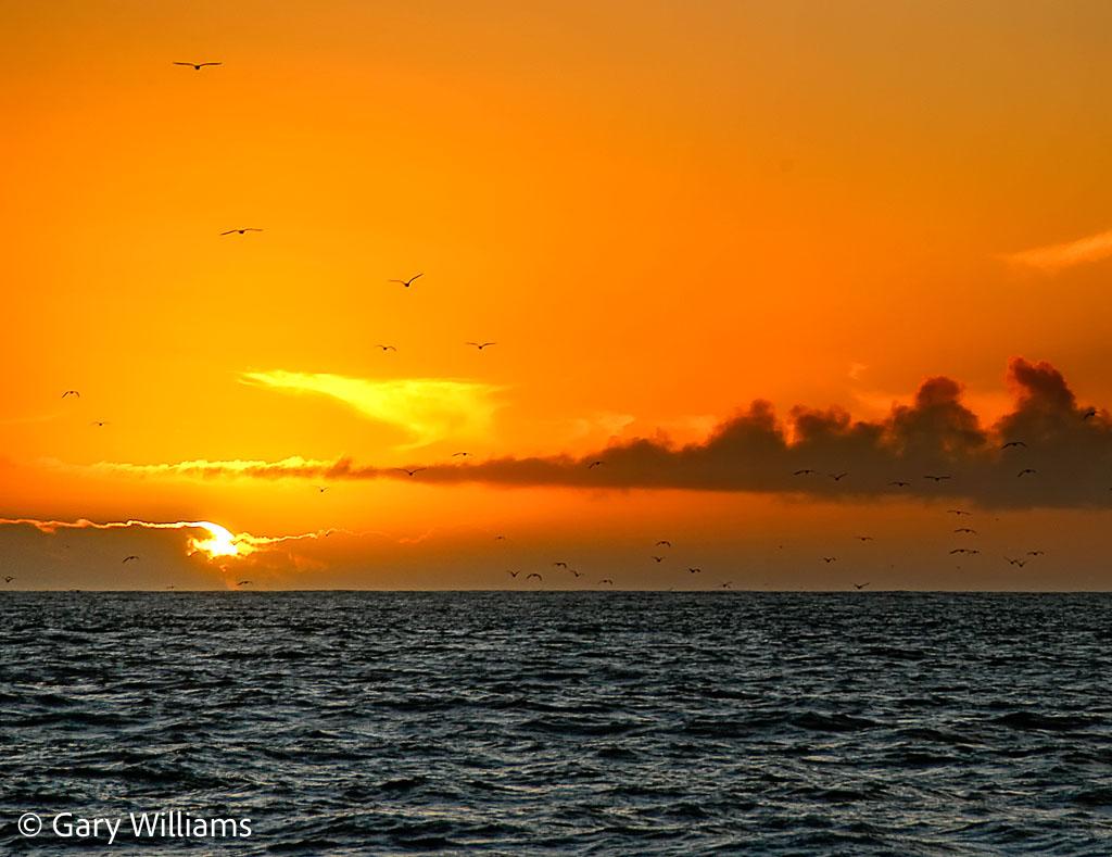 Moss-Landing-Sunset-12-1-of-1.jpg