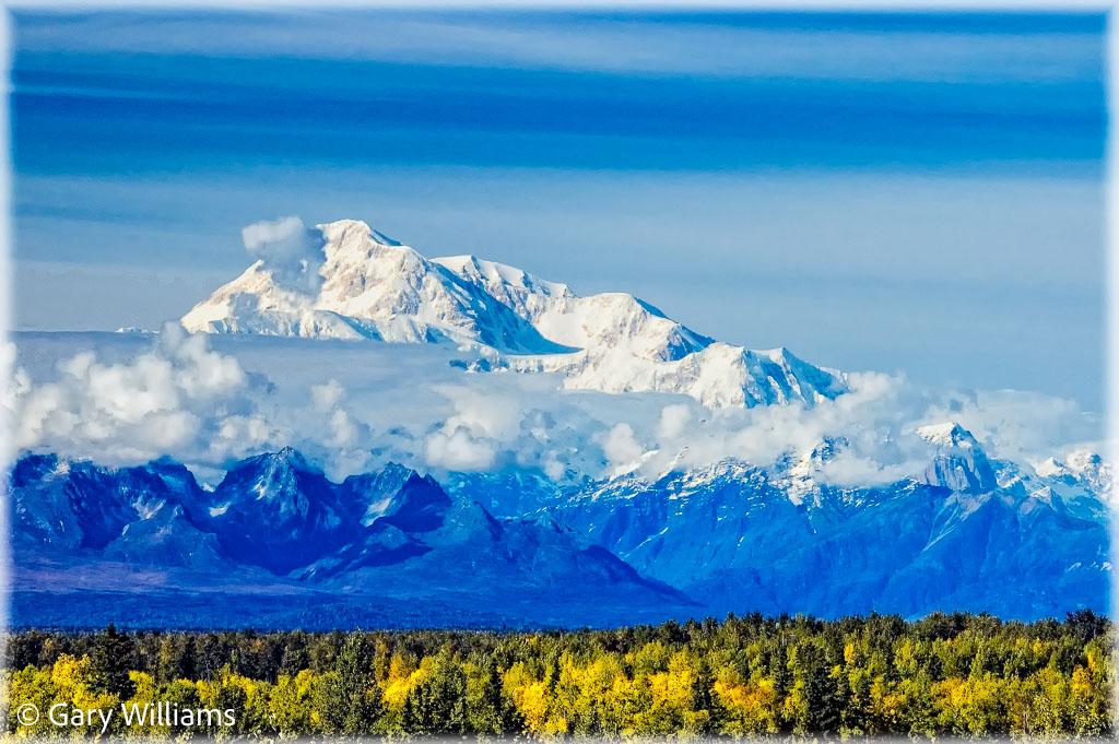 Denali-Fall-Color-copy.jpg
