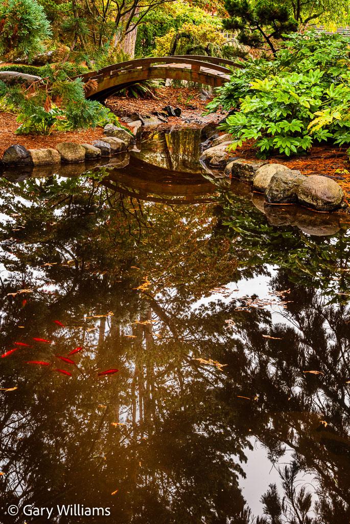 Tacoma_20081016_3720-2.jpg